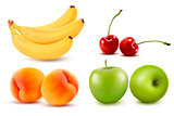 Group of fresh colorful fruit. Vector illustration.