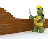 tortoise building contractor