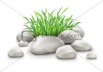 green grass in stones as landscape design element