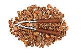 Nutcracker on empty nutshells