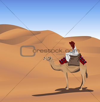 Bedouin and Camel