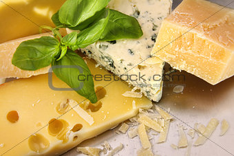 An assortment of cheeses on counter