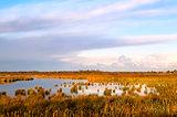 flooded area in Drenthe by Leekstermeer