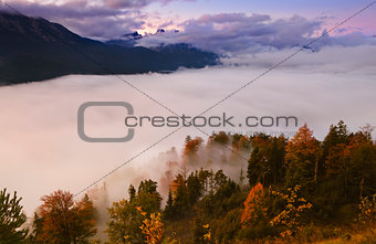 fog over forest in mountains