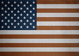 USA flag on white canvas