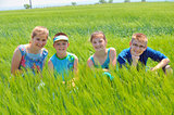 Cousins in wheat field