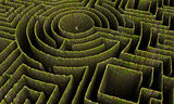 green maze