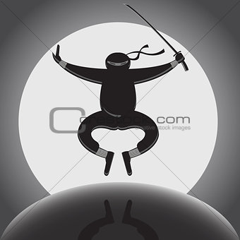 Vector ninja over full moon background