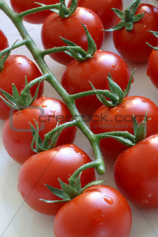 Tomatoes in natural light