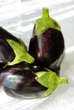 Eggplants in natural light