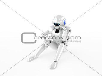 Human similar robot