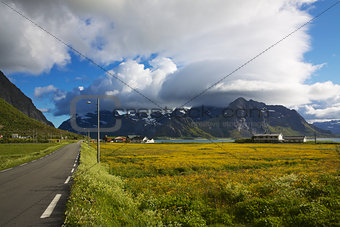 Road to Lofoten