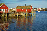 Huts on Lofoten