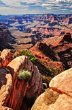 Grand canyon vertical landscape view, rocks foreground