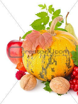 thanksgiving day still life