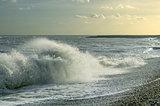 Windy seashore