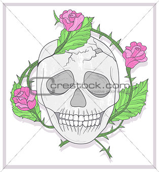 Skull and roses vector illustration