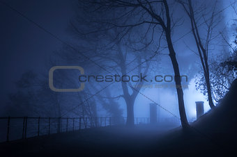 Fog in the darkness