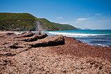 Ostriconi beach