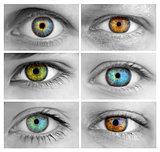 Set of 6 Colorful Different Open Eyes / Huge Size