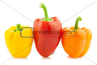 Fresh Colored Peppers / Paprika / Isolated