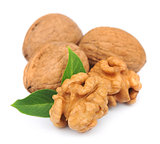walnuts with leafs