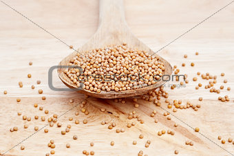 Mustard Seeds on wooden serving spoon with selective focus