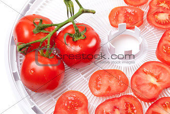 Fresh tomato on food dehydrator tray