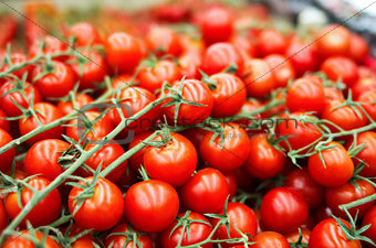 fresh cherry tomato in box in supermarket