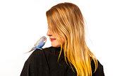 Friendly Parakeet