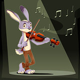 Musician Rabbit. 