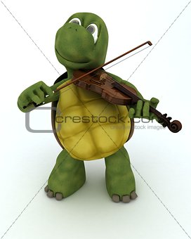 tortoise playing the violin