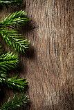 fir branch on wooden backgound