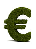 Grass Euro