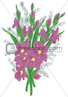 Bouquet of lilac gladioluses