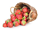 Strawberries and basket