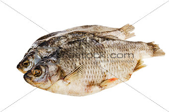 dried fish is isolated on white