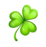 leaf of green clover
