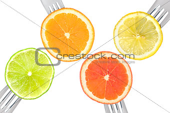 lime lemon orange and grapefruit citrus fruit