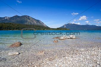 lavender Walchensee, Bavaria