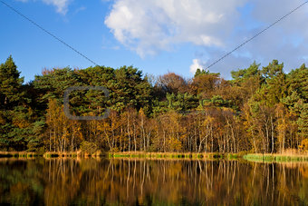 reflection of autumn forest in lake