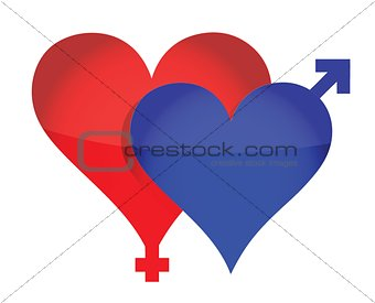 Two illustrated hearts with gender sign