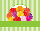 Colorful Roses Greeting Card Illustration