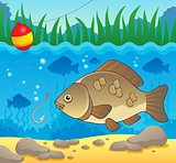 Freshwater fish theme image 2