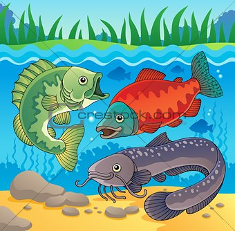 Freshwater fish theme image 3