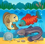 Freshwater fish theme image 5