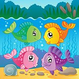 Freshwater fish theme image 7