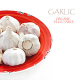 Garlic.