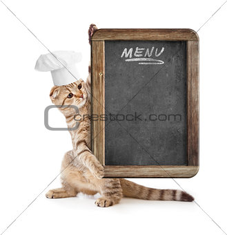 funny kitten in cook hat holding menu blackboard