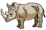 rhinoceros